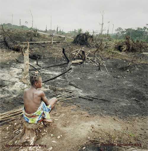 Abords d'un village pygmée