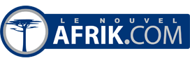 Afrik.com