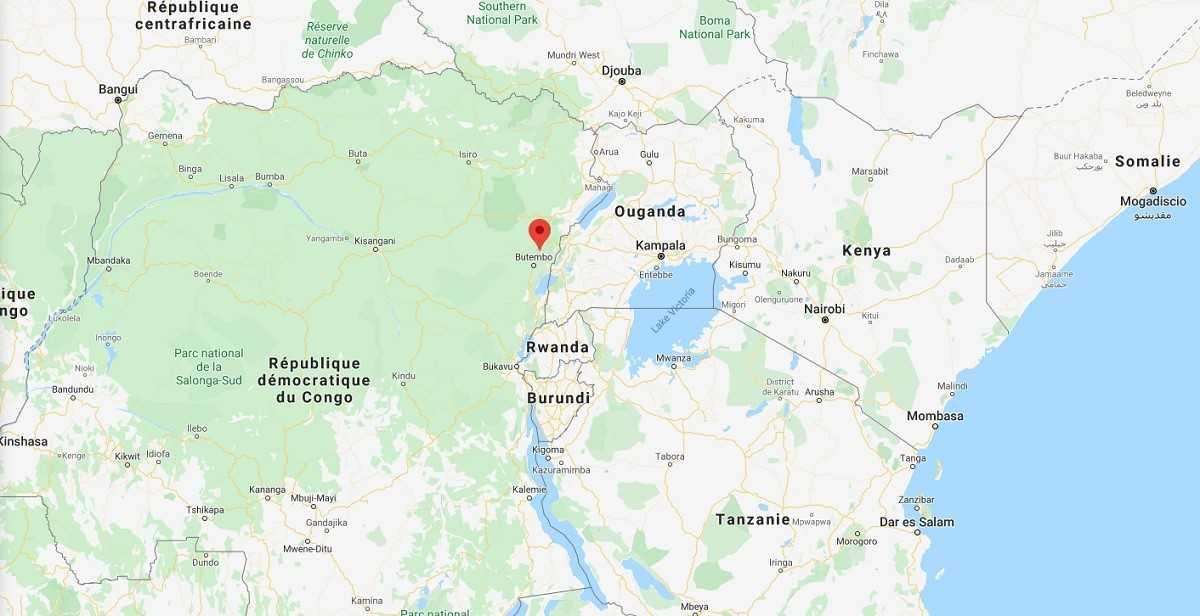 Covid-19 en RDC, des étudiants arrêtés alors qu'ils manifestaient pour la reprise des cours