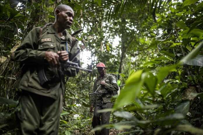 Des hommes armés tuent six éco-gardes — Parc des Virunga